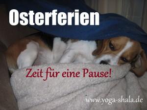 2015 04 Osterferienpause im Yoga-Shala Erfurt