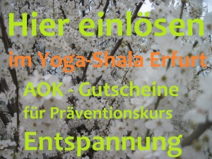 2016 AOK Gutscheine Präventionskurs Entspannung im Yoga-Shala Erfurt