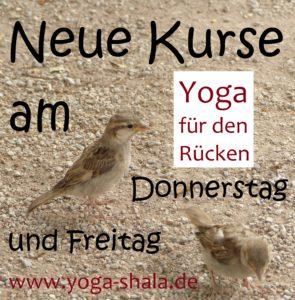 2016-10-23-neue-kurse-yoga-fuer-den-ruecken