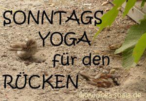 2016-10-30-am-sonntag-yoga-fuer-den-ruecken